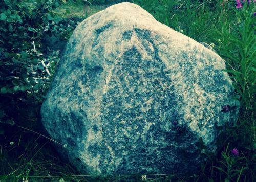 рис на камн 0009-A