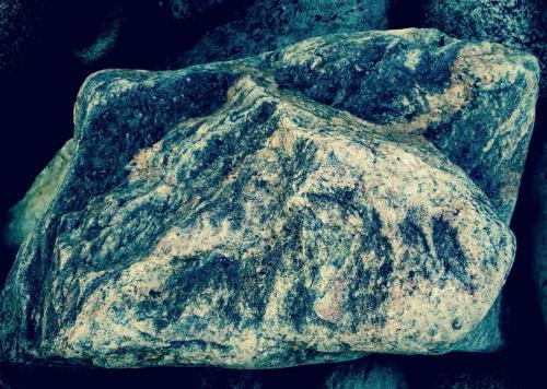 рис на камн 0013-A