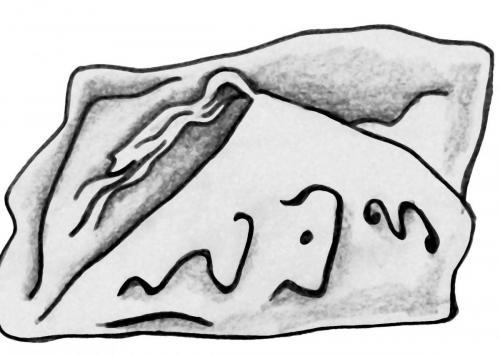 рис на камн 0013-C