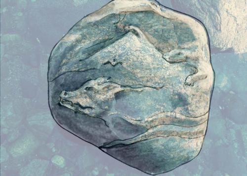 рис на камн 0036-B