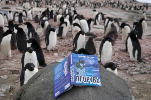 Путешествие книги от Северного Полюса до Антарктиды